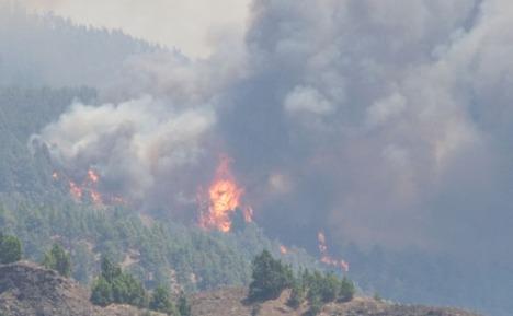 Greenpeace cita los recientes incendios de La Palma.