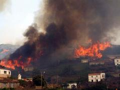 Incendio en Chipude (La Gomera)