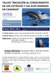 CARTEL DE TALLER CETACEOS CORREGIDO 3