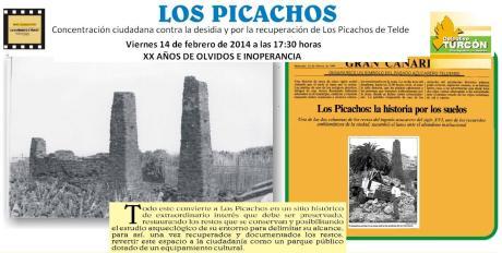 Picachos2014