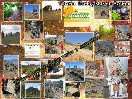 Collage Felicitación Navidadesverde y sostenibles