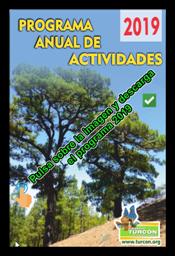 a Programa anual de actividades 2019